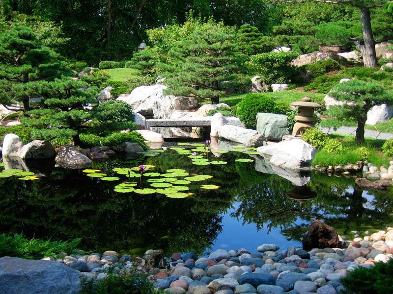 japanese-garden-at-como-park-conservatory