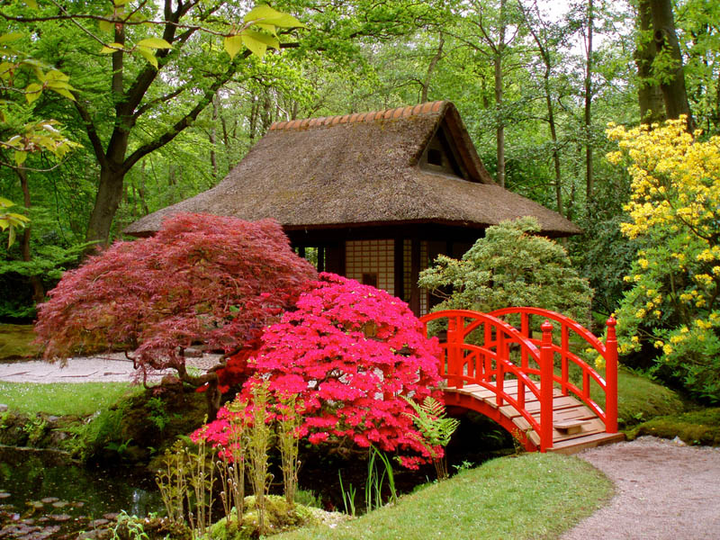 japanese-garden-netherlands