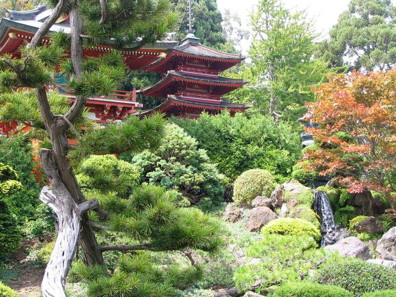 japanese-tea-garden-in-san-francisco